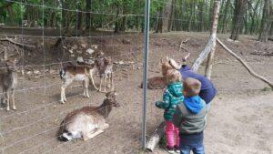 Zoo Frankfurt. Fot. Czytelnik