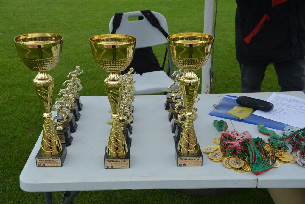 Mistrzostwa Euroregionu Pro Europa Viadrina 2
